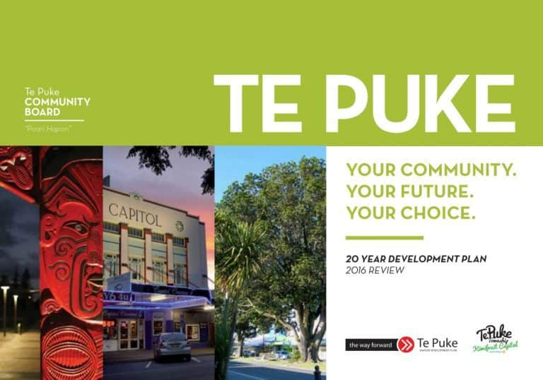 Te Puke 20 Year Development Plan