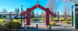 Jubilee Park, Te Puke